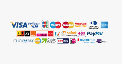 Famous Online Payment Provider
